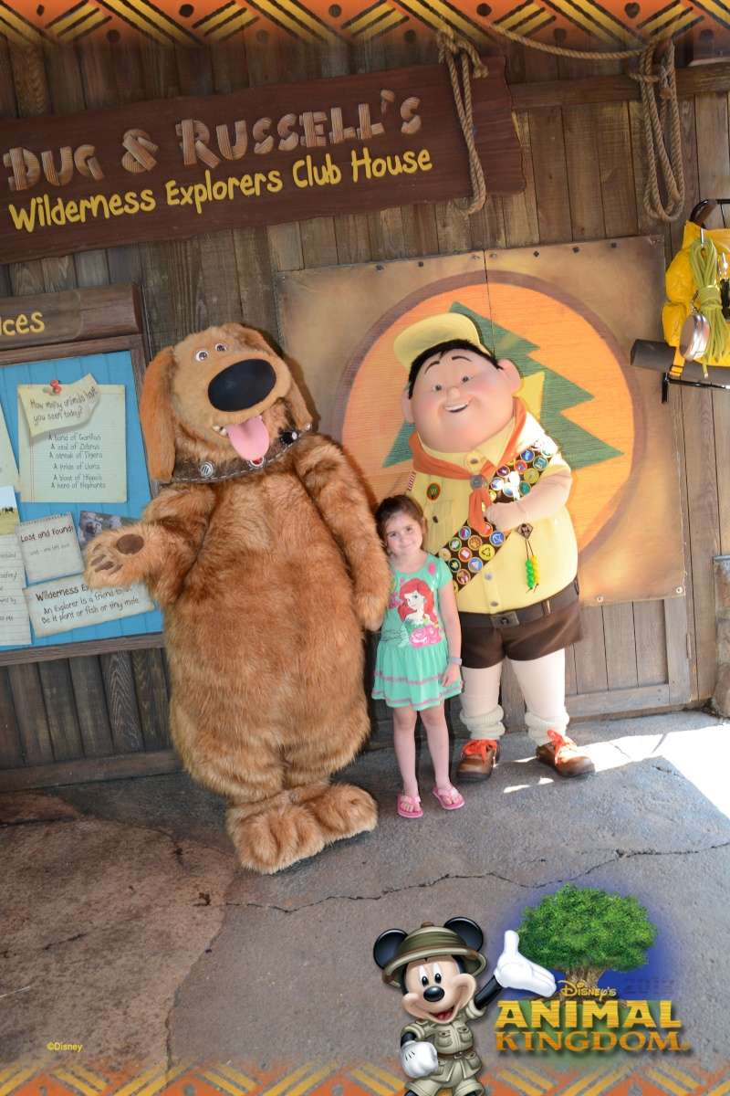 Tr Miami- everglades- Universal-Disney world- Discovery Cove - Page 4 Ak_out10