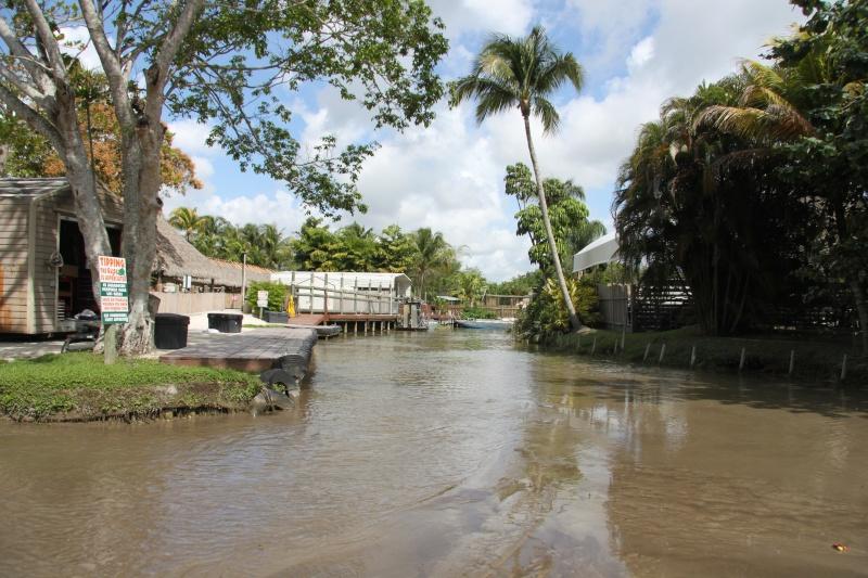 Tr Miami- everglades- Universal-Disney world- Discovery Cove Img_8413