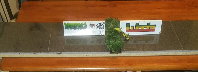 Official Newest Made/Purchased Ramps And Rails Thread. - Page 2 Granit10