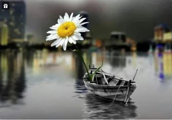 Картинки из интернета, любые)) E_ua_a17