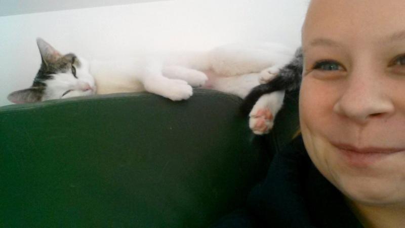 Jorelle, femelle type européen blanche tachetée de noir née le 1 novembre 2014 - Page 3 16784010