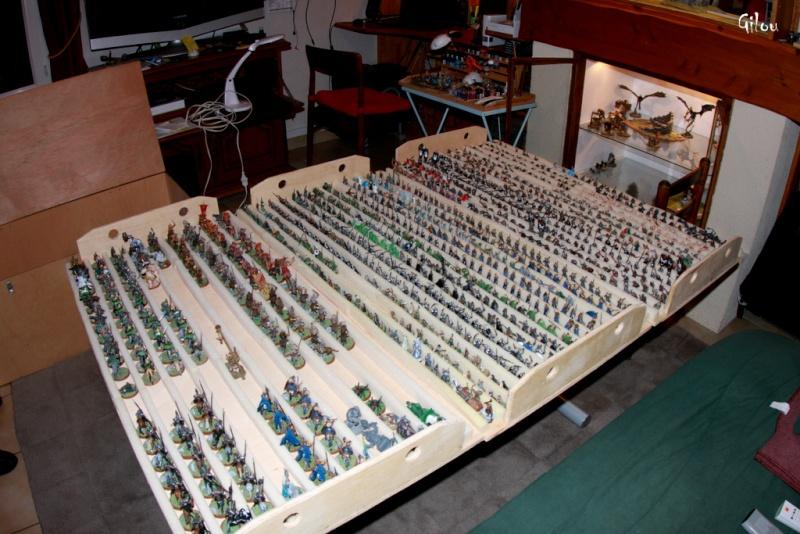 Le transport de figurines en masse.... Img_9315