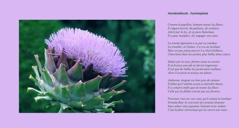Le coeur d'artichaut... pourquoipas. Fleura10