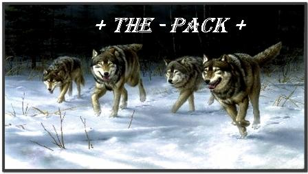 + The - Pack +