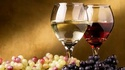 Che vino bevete?