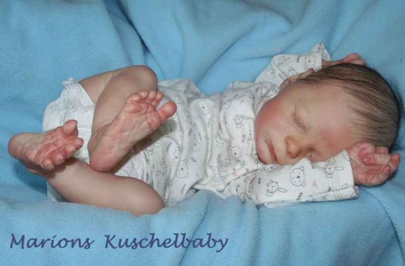 KASE  asleep Toll_k11