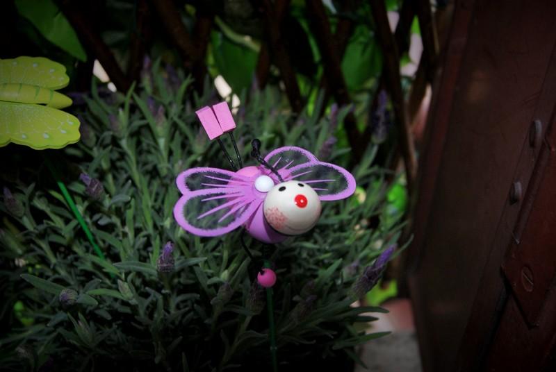 instant fleurit  Dsc01613
