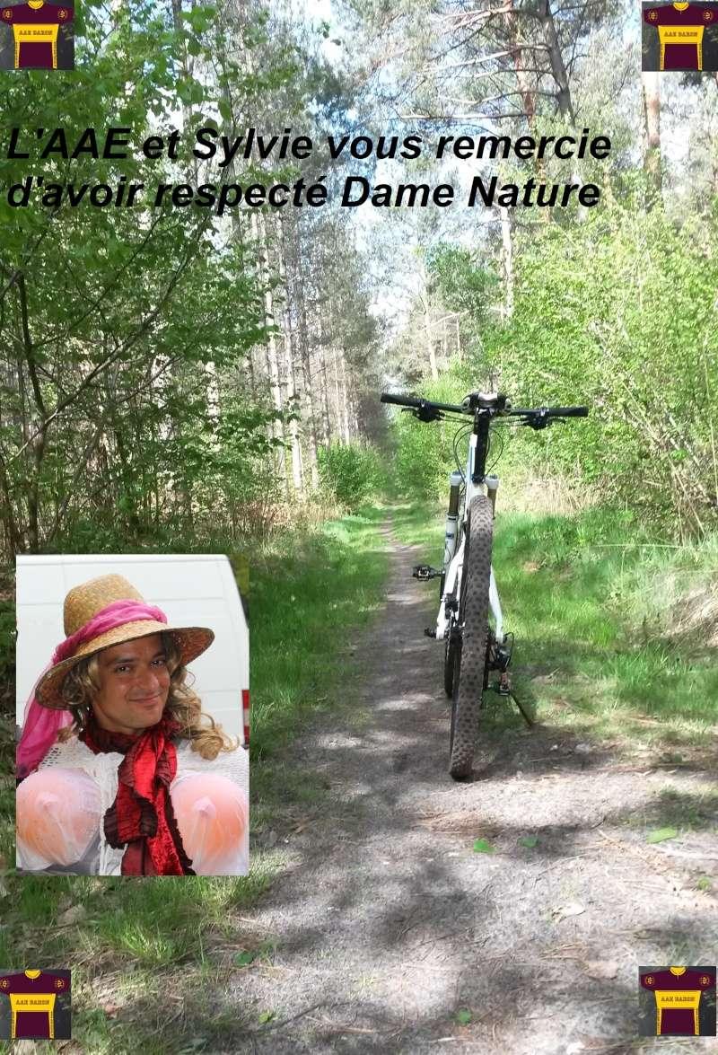 [60] A la recherche de Sylvie 2015 - 3 mai 2015 - Page 16 Aae10