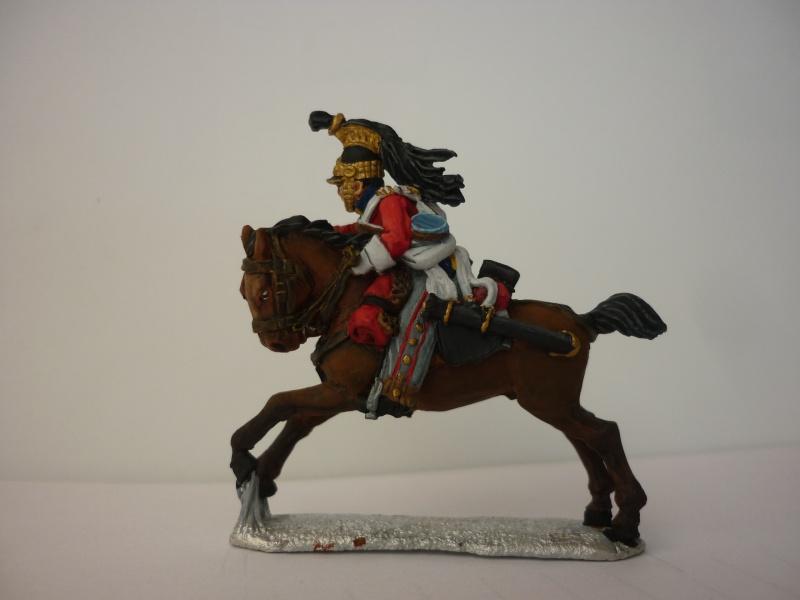 Prise de Guerre, Waterloo 1815 P1040715