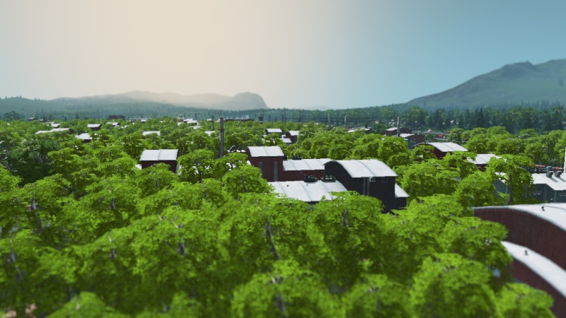 Cities: Skylines  Cities11