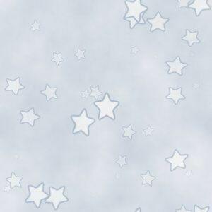 оформление Star0410