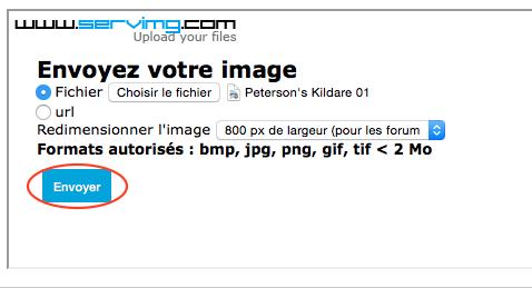 Comment insérer une image dans un message ? 0410