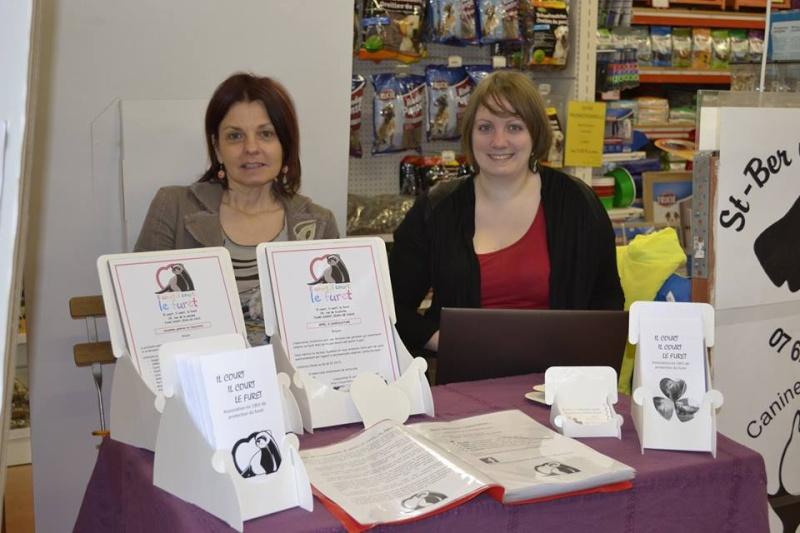 Journée des associations 21 mars 2015 Châtenoy en Bresse 10981910