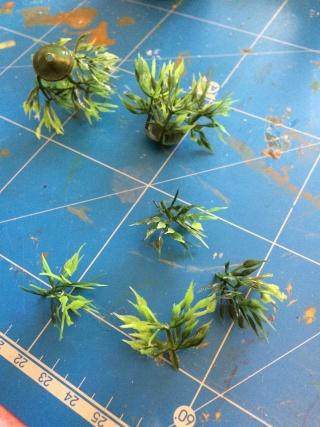 - PLANTES & ARBUSTES - Img_1216
