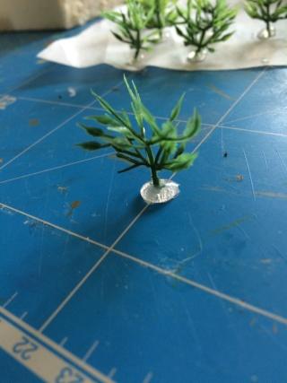 - PLANTES & ARBUSTES - Img_1218