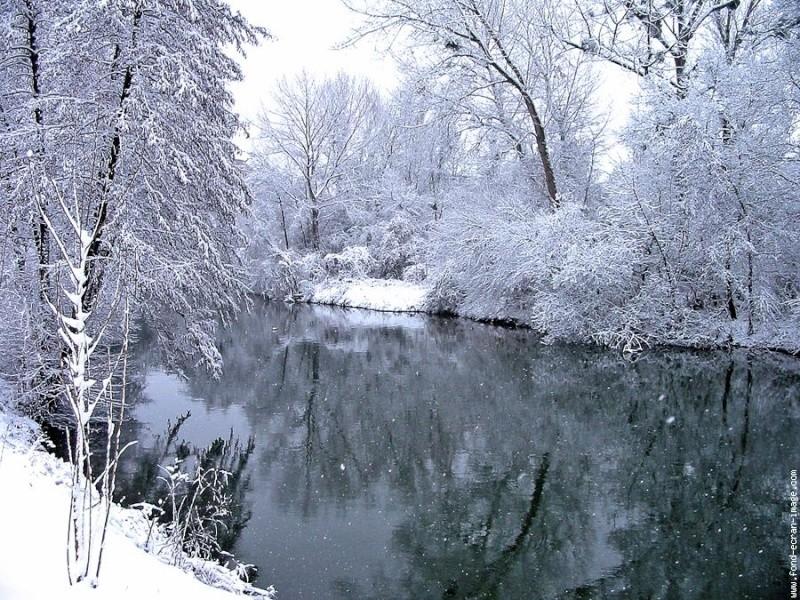 hiver et neige Neige010
