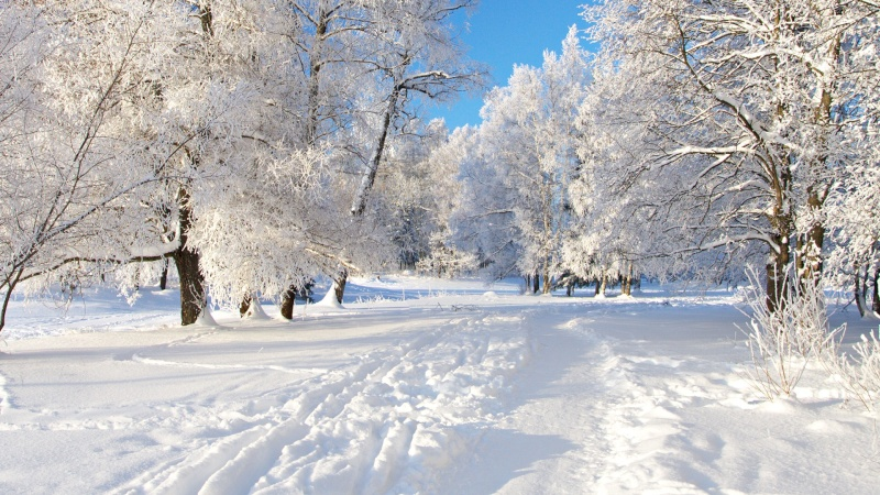 hiver et neige Neige_10