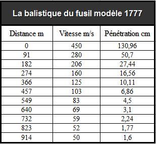 Le Fusil et l'Artillerie Napoleonniennes Fusil10