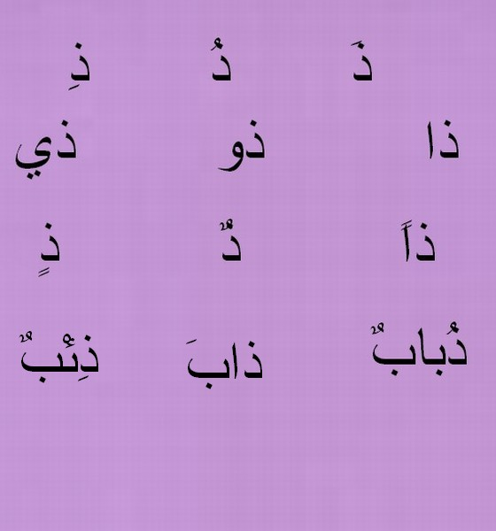 pour  Maurane oum zahra Ggggoo11