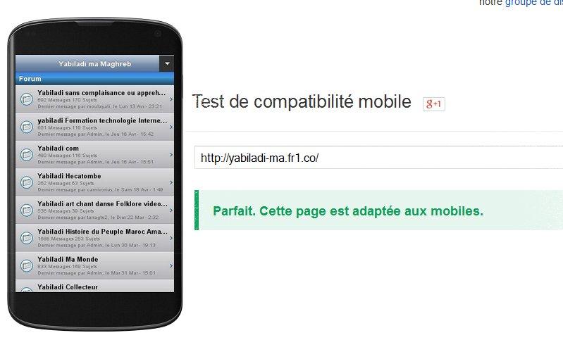 Test de compatibilté mobiel de site Tabila10