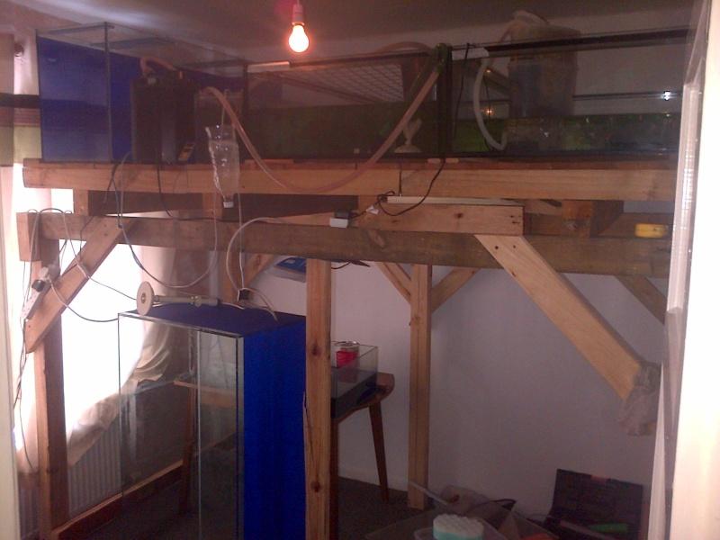 Deans Angels Fishroom Img-2012