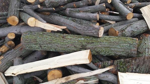 new build  Log10