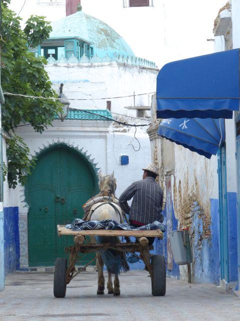 [Maroc Camp/Généralités] Campings à Assilah (Zone 2) P1030323