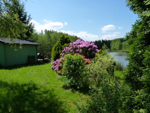 le joli mois de mai des fous jardiniers - Page 6 P1030111