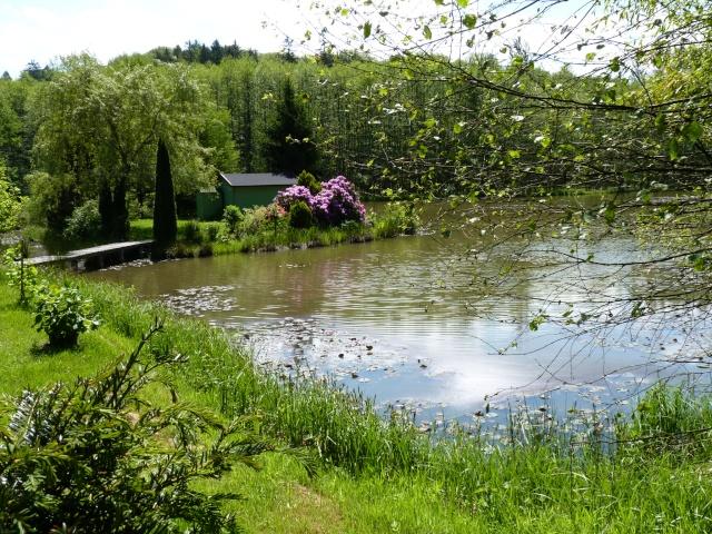 le joli mois de mai des fous jardiniers - Page 6 P1030116