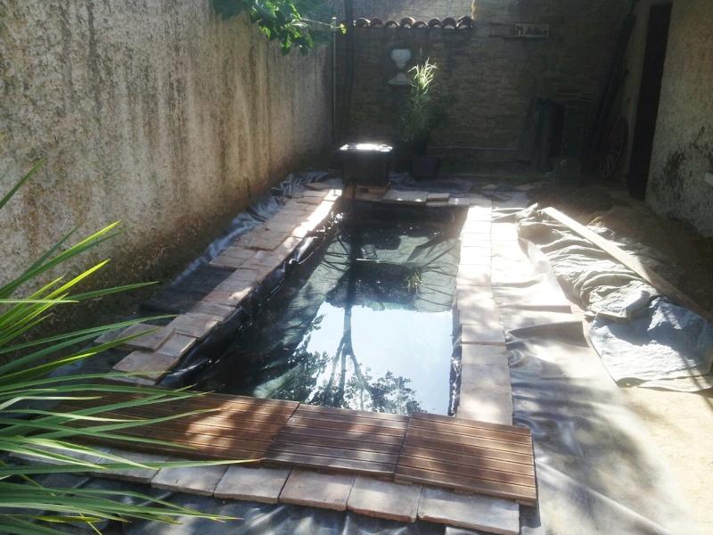 Mon bassin à Koï 2014-013