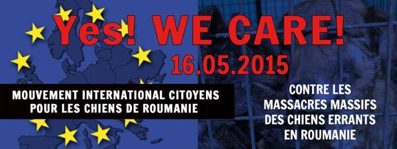 manifestation en France le 17 mai 2014 contre le massacre des chiens en roumanie - Page 37 Yes11