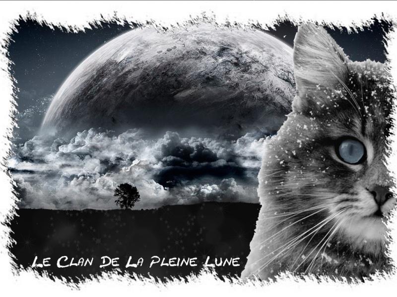 Moi,Etoile Lunaire Clan_d10