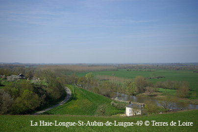 Sortie touristique en région angevine du 7 Juin, le programme, l'inscription Cornic11