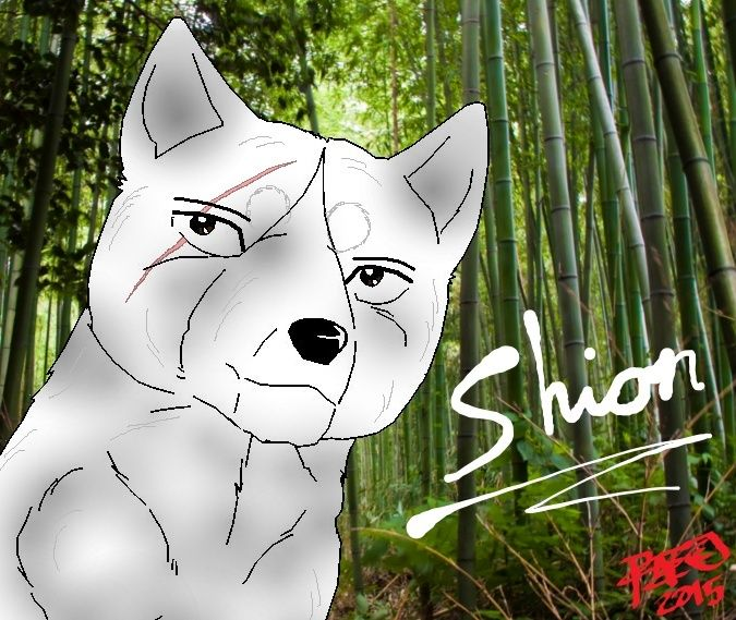 Shion - Igan Shinobien Johtaja Shionb10