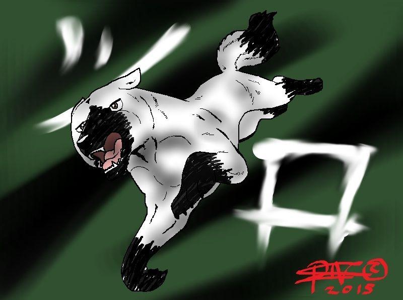 Shiro - Yukimuran poika Shiro_10