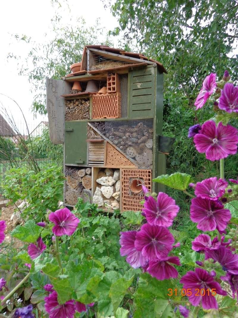 Jardinage.... Dsc01214