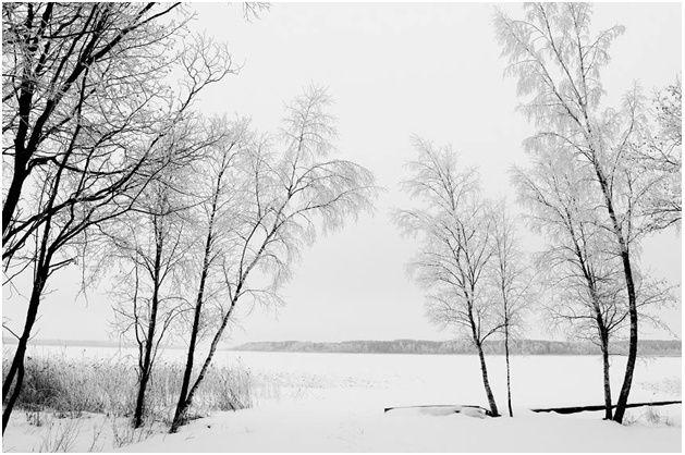 Nature d'un autre temps au Belarus - Page 2 Lac_en10