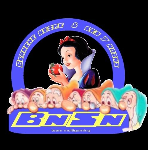 Grand Concours Logo BnSn Logo_b10