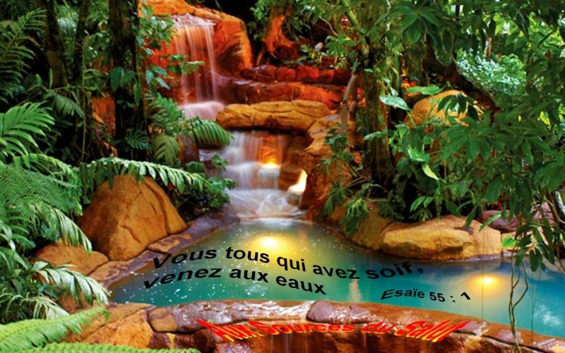 Abreuvez-Vous Aux Eaux Claires Coulant D'en-Haut - Accueil Source11