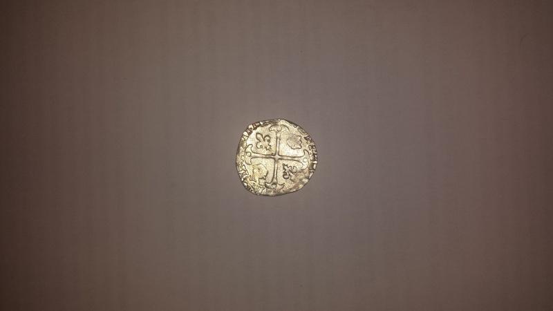 Douzain du 2e type Henri IV 20150315