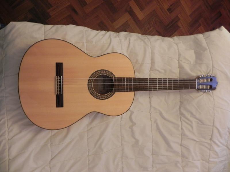 Conseils pour l'achat d'une première guitare - Page 2 Dscn5014