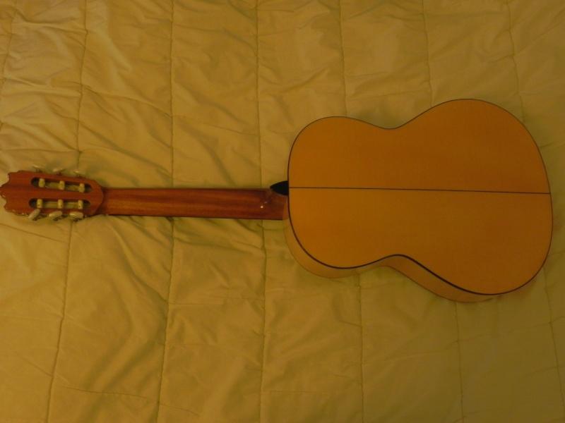 Conseils pour l'achat d'une première guitare Dscn5015