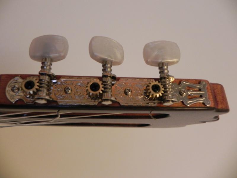 Conseils pour l'achat d'une première guitare Dscn5017