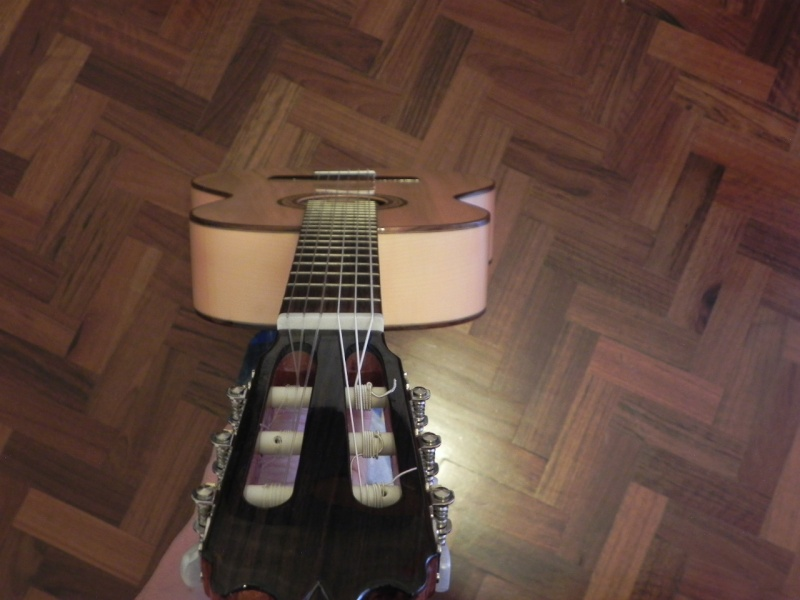 Conseils pour l'achat d'une première guitare - Page 2 Dscn5018