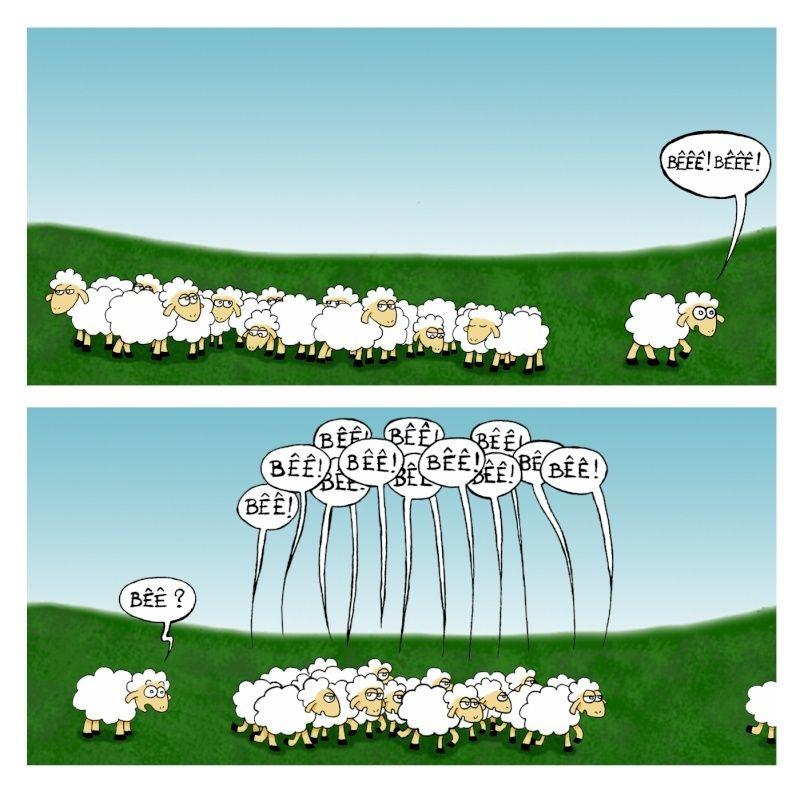 Encore une preuve que nous sommes des moutons ! Les-mo10
