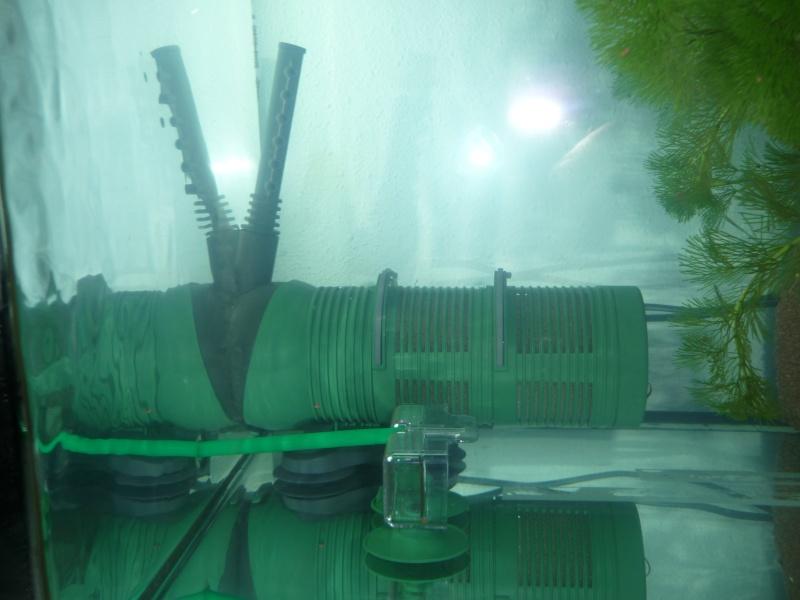 Début en aquariophilie avec un bac de 126L besoin de conseil P1040711