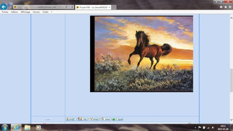 Puzzle #38 - Le cheval Clipbo31