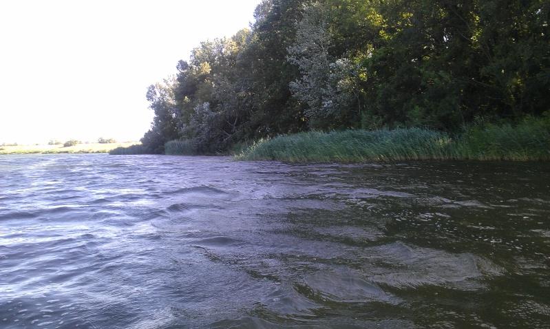 lac de caderousse  Imag0013