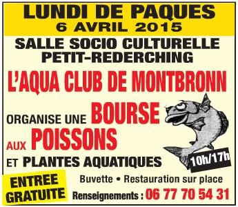 Bourse à Petit Réderching le 06 avril 2015 Sans_t10