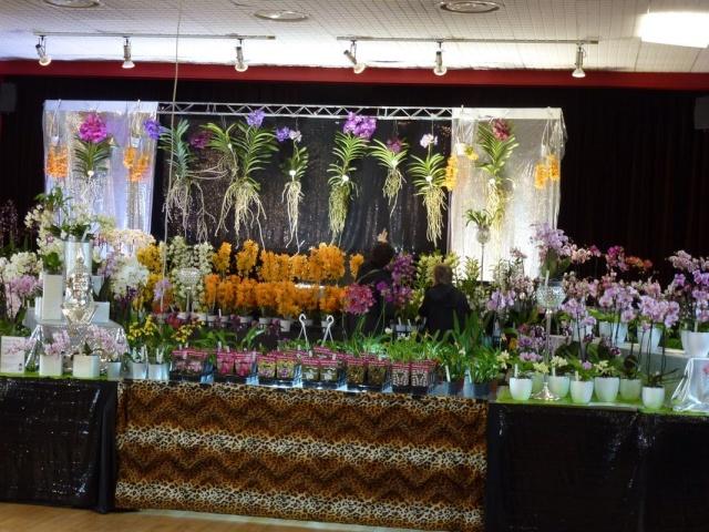 Visite de l'expo salon de l'orchidée à Veigné P1040620